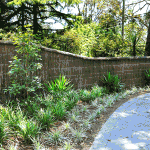 Brush Fencing In Sydney