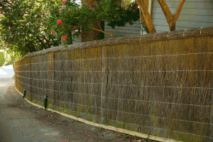 Perimeter Brush Fence