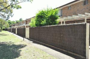 Several Brush Wood Fences